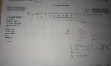 Stimulační protokol