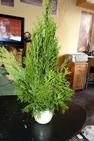 Vánoční tvoření - stromeček
