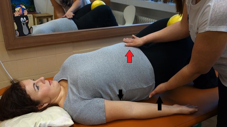 cvik na páteř a břišní svaly se zvednutým zadečkem