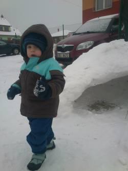 Vašík na sněhu