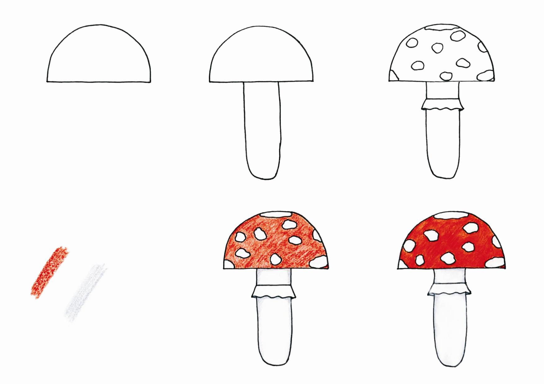 Jak se kreslí houba?