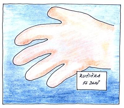 10. týden těhotenství - ruka zárodku