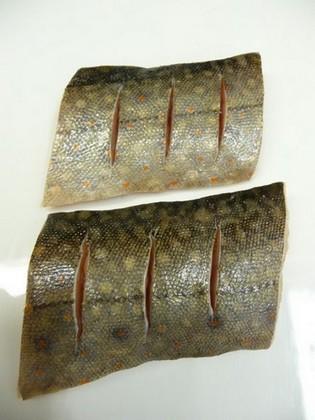 Naříznutá kůže ryby