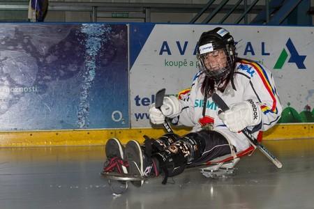 Sledge hokej